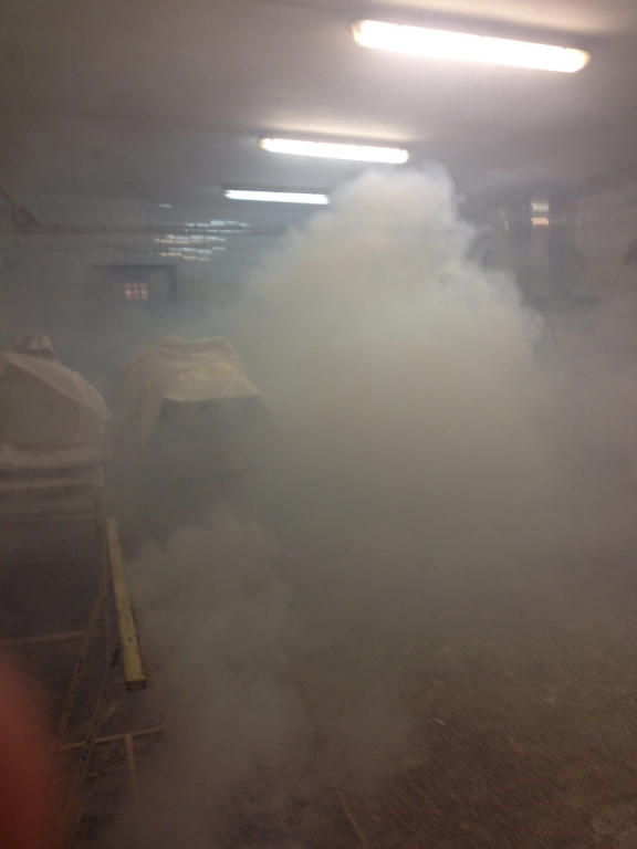 Dezynsekcja – fumigacja metodą zamgławiania termicznego