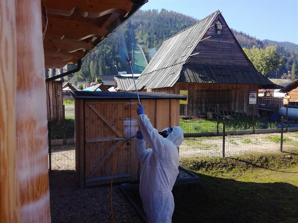 xilix dezynsekcja szkodniki drewna